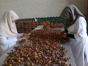 Сухофрукты из Ирана