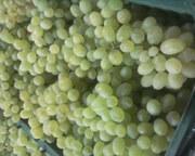 Продам огурцы, мандарин, гранат, виноград и.т.д