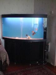 Продается аквариум на 400 литров